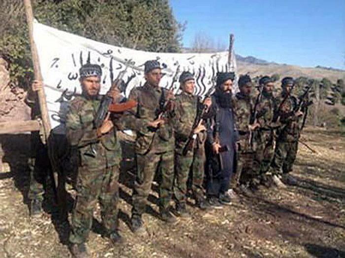 Terroryści z organizacji Tehreek -e- Taliban Pakistan /PAP/EPA