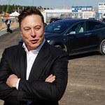 Tesla nie wpłaciła 100 mln euro kaucji; prace na budowie Gigafactory wstrzymane