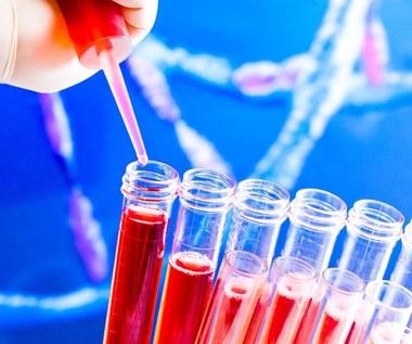Test krwi, który wykryje raka trzustki