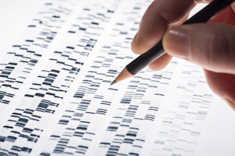 Testy DNA zyskują na popularności /123RF/PICSEL