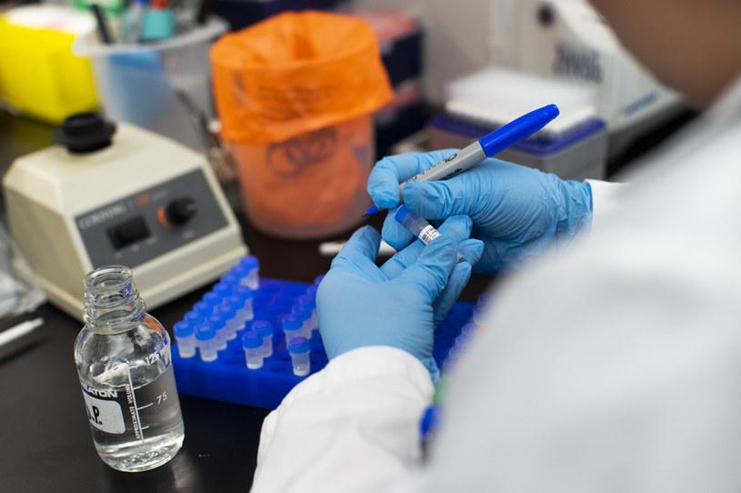Testy na koronawirusa / Kena Betancur /Getty Images