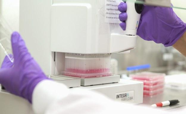 Testy szczepionki na ebolę