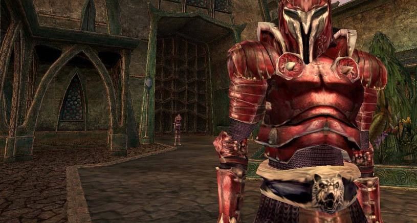 The Elder Scrolls Morrowind /materiały prasowe
