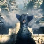 The Last Guardian: Wymagania zalecane - PS4 PRO