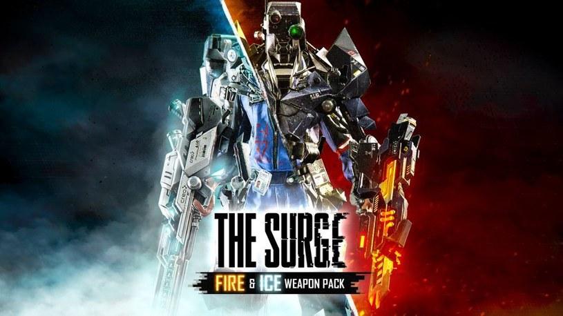 The Surge /materiały prasowe