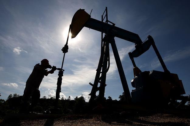 """""""The Week"""": Cena ropy może spaść do 20 dol. za baryłkę /©123RF/PICSEL"""