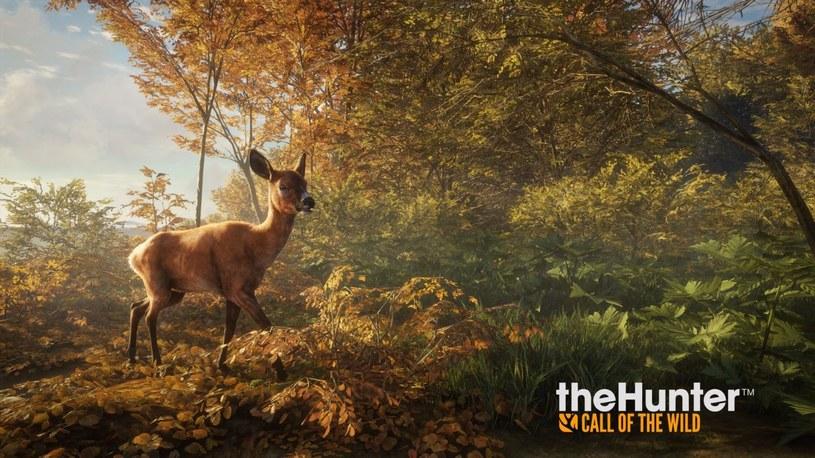 theHunter: Call of the Wild /materiały prasowe
