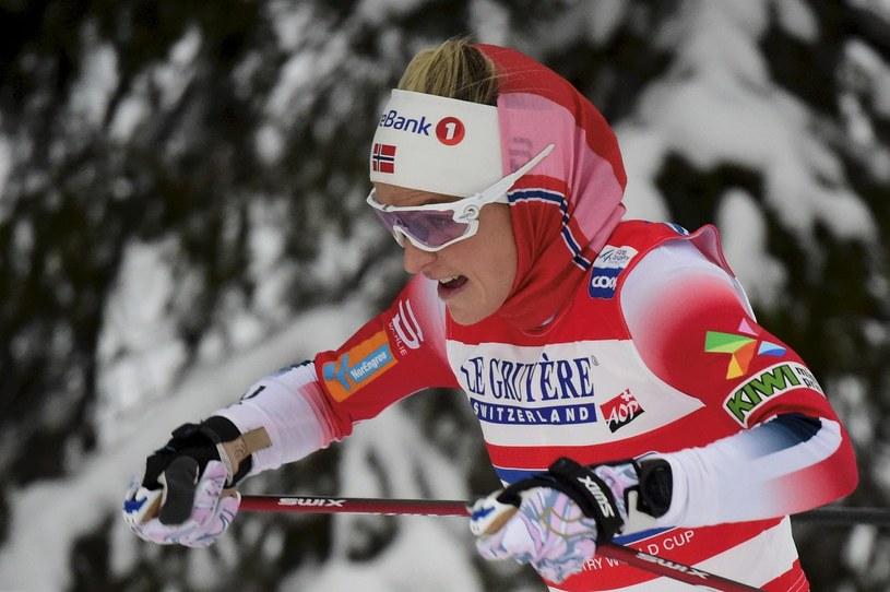 Therese Johaug wygrała poprzednią edycję Tour de Ski /AFP