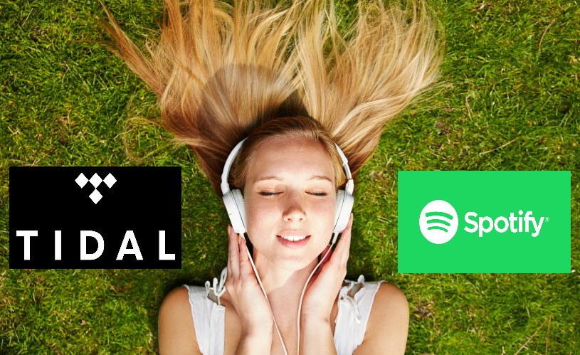 Tidal czy Spotify - opisujemy oba serwisy muzyczne /123RF/PICSEL