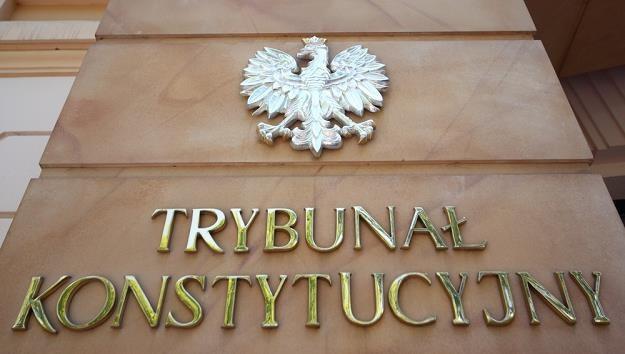 TK: Zasady kar za wycinkę drzew są niekonstytucyjne. Fot. Stanisław Kowalczuk /Agencja SE/East News