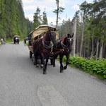 Tłumy w Tatrach to niejedyny problem. Największe grzechy turystów