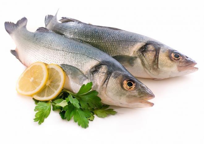 Tłuste ryby na diecie /© Photogenica