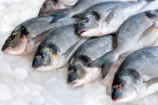 Tłuste ryby właściwości /© Photogenica