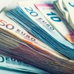 TNS Polska: Rośnie niechęć Polaków do wprowadzenia euro