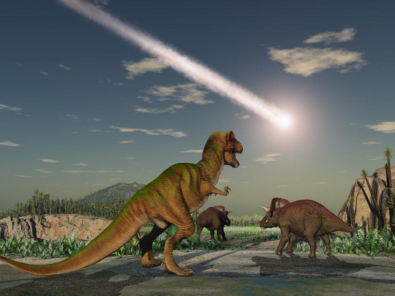 To asteroida zabiła dinozaury - nie żadne inne zjawiska /123RF/PICSEL