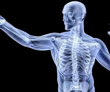 To białko umożliwia rozrost kości i chroni przed nowotworami