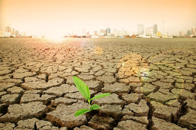 To człowiek jest główną przyczyną obecnych zmian klimatycznych /123RF/PICSEL