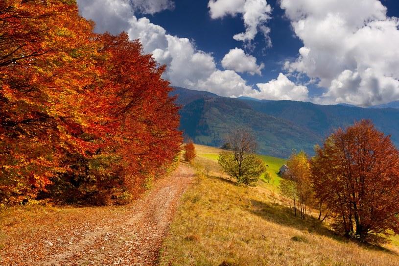 To już jesień? /123RF/PICSEL