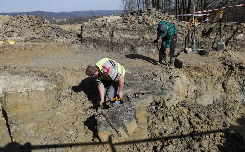 To kolejne odkrycie na Podkarpaciu. W kwietniu w Sanoku odkryto osadę celtycką z III w p.n.e. /Krzysztof Kapica /East News