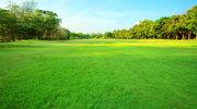 To najbardziej ekologiczne miejsce w Polsce