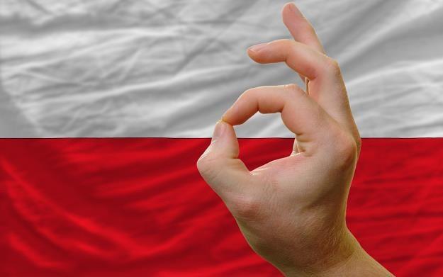 To najwyższy wzrost gospodarczy w Polsce od sześciu lat /©123RF/PICSEL
