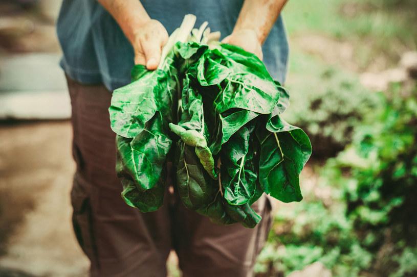 To udowodnione: wegetarianie żyją dłużej /123RF/PICSEL