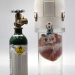 To urządzenie wydłuży przydatność organu do przeszczepu z 4 do 24 godzin
