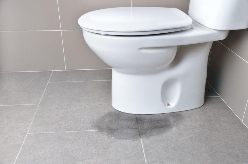 Toaleta /©123RF/PICSEL
