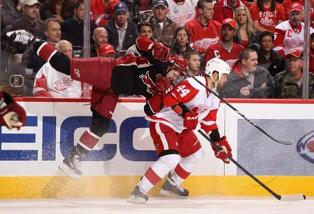Todd Bertuzzi, hokeista Detroit Red Wings (z prawej) /AFP