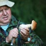 Toksykolodzy ostrzegają grzybiarzy: Zabić może tylko jeden kapelusz
