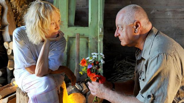 Tomasz (Jerzy Schejbal) oświadczy się Basi (Małgorzata Braunek) /fot  /Agencja W. Impact
