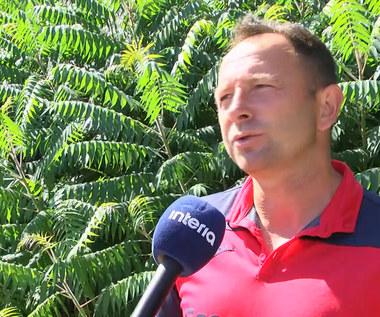 Tomasz Sokołowski dla Interii: Boruc ryzykuje przychodząc do Legii. Wideo