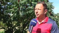 Tomasz Sokołowski dla Interii: Legia skorzystała na pandemii. Wideo
