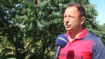 Tomasz Sokołowski dla Interii: Legia znów powinna sięgnąć po tytuł. Wideo