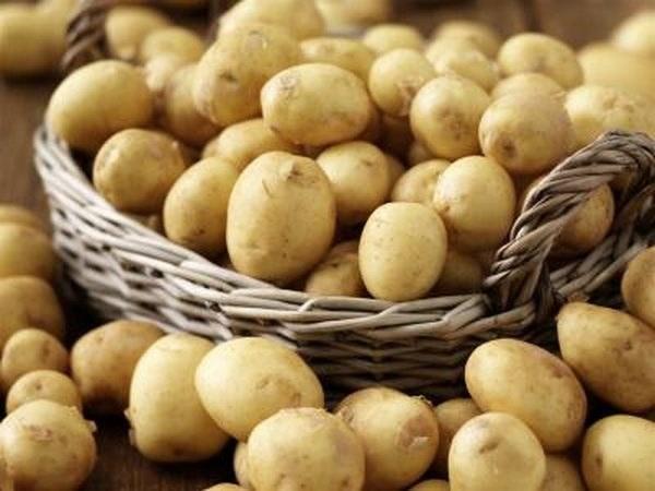 tonik z soku ziemniaczanego /© Photogenica