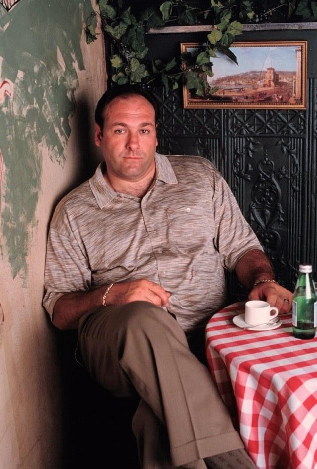 Tony Soprano to zupełnie inny facet niż ja – mawiał o szefie mafii z New Jersey, którego grał przez osiem długich lat. /materiały prasowe