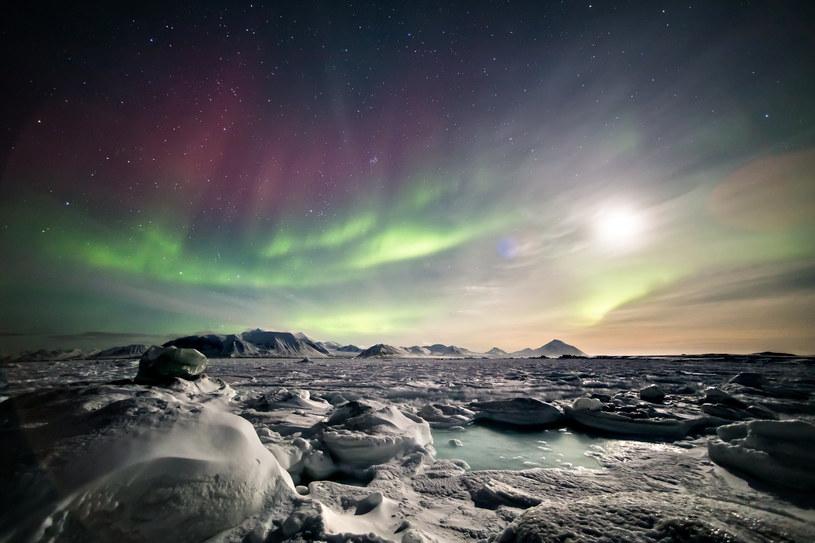 Topniejące lodowce odsłaniają nowe lądy /123RF/PICSEL