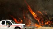 """""""Tornada ognia"""". Kalifornię trawią pożary"""