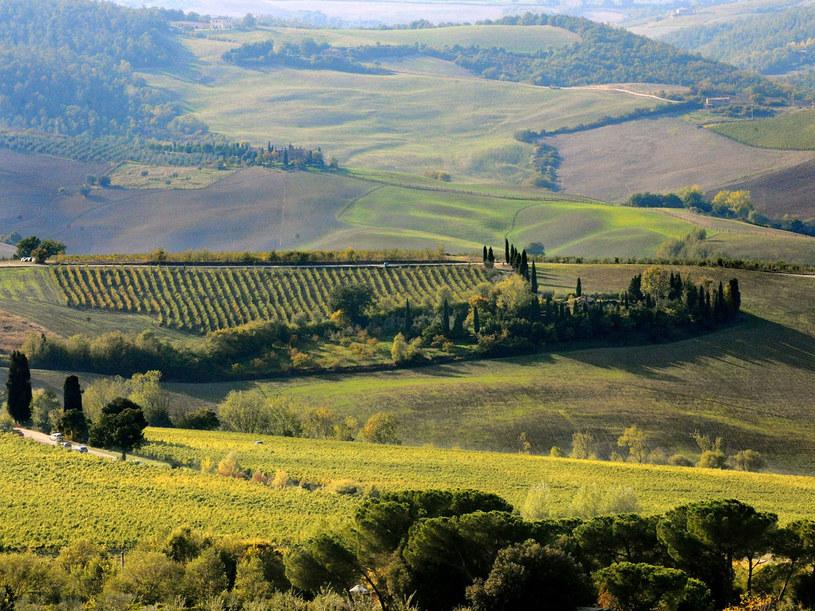 Toskania to jeden z najważniejszych regionów turystycznych na świecie  /AFP