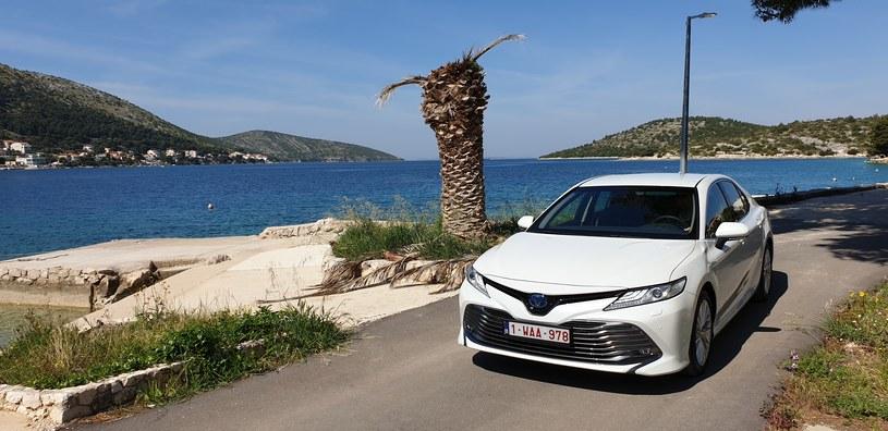 Toyota camry /INTERIA.PL