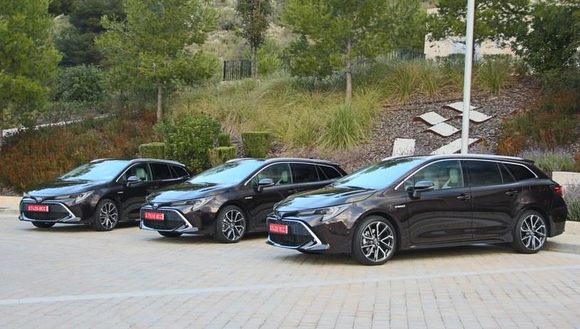 Toyota Corolla /INTERIA.PL