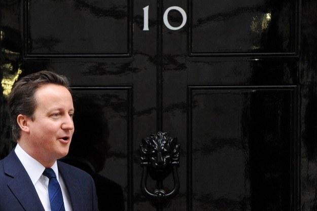 Tożsamość kociego żandarma, który będzie pilnował porządku na Downing Street, nie została ujawniona /AFP