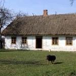 TP wspiera polską wieś