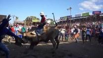 """Tradycyjna impreza w stylu """"tico"""". Kostarykańskie rodeo i bezkrwawa korrida przyciągają tłumy do Santa Cruz"""