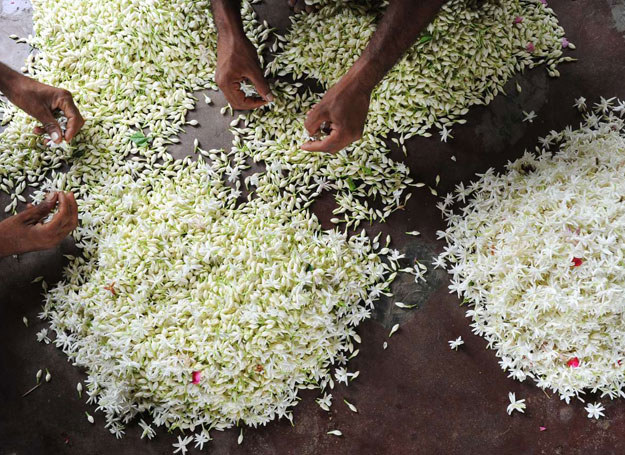 Tradycyjnie wytwarzane perfumy musza konkurować z modnymi markami /AFP