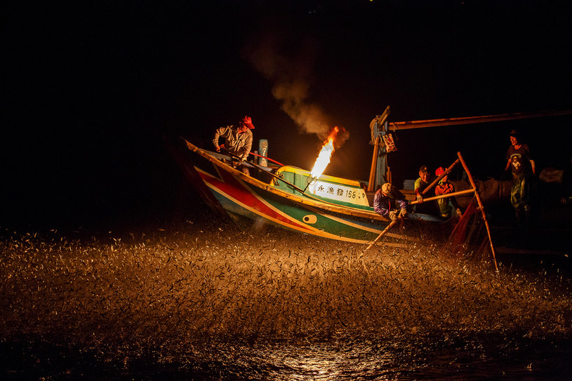 Tradycyjny połów ryb na Tajwanie /Flickr/ Ryan Wang /archiwum prywatne