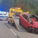 Tragedia pod Ciechanowem. W zderzeniu z łosiem zginął 18-letni kierowca