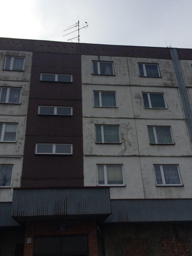 Tragedia wydarzyła się w tym bloku /Marcin Buczek /RMF FM