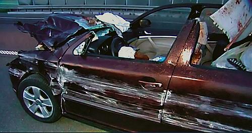 TRAGICZNE ZDERZENIE Z ŁOSIEM - kierowca Skody, który uderzył w łosia, zginął na miejscu. Do wypadku doszło na autostradzie A2. Zwierzę pokonało płot i wkroczyło na jezdnię. /Motor