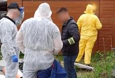 Tragiczny finał poszukiwań 11-letniego Sebastiana. Chłopiec nie żyje